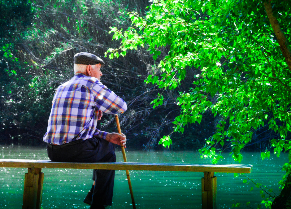 5 Fun Activities for Seniors
